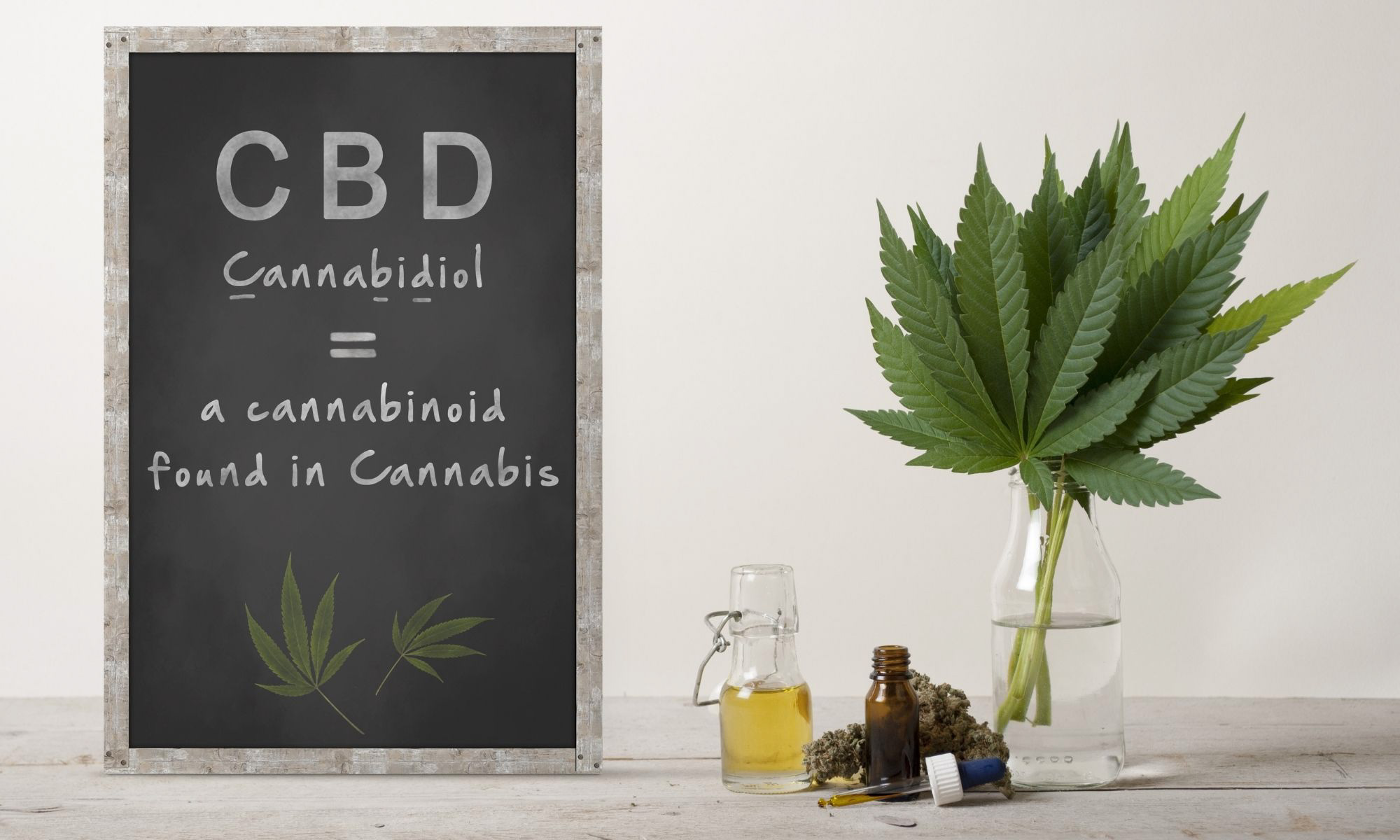 The Importance of CBD Marketing